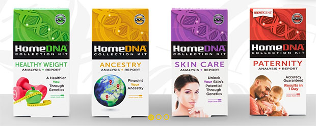 HomeDNA test kit review