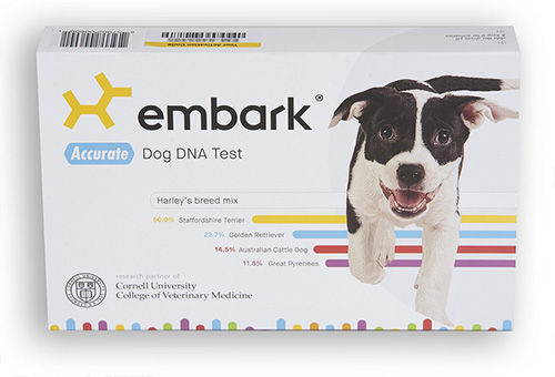 embark dog dna test review