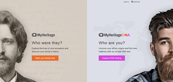 myheritage dna kit review